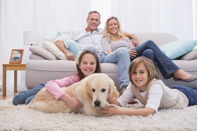 cute-siblings-playing-with-dog-with-their-parent-sofa compressed